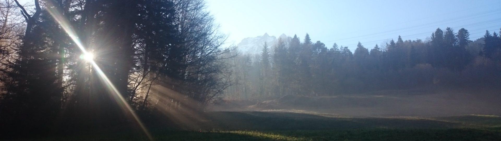 Energie aufladen (Deutsch)   Consulenza visiva